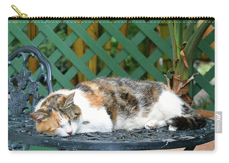 Pat Turner Carry-all Pouch featuring the photograph Sleeping Cutie by Pat Turner
