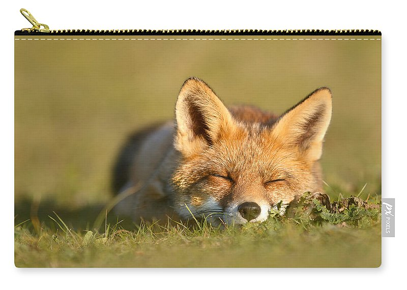 Carnivore Carry-all Pouch featuring the photograph Sleeping Fox Kit by Roeselien Raimond