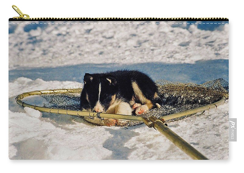 Alaska Carry-all Pouch featuring the photograph Sleeping Puppy by Juergen Weiss