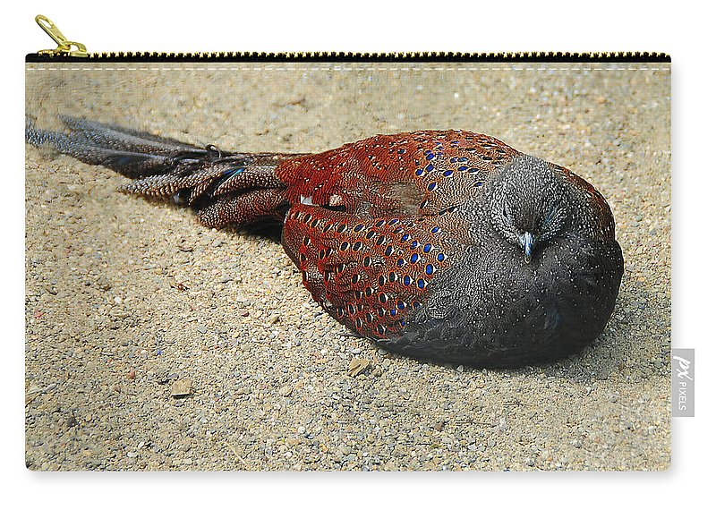 Bird Carry-all Pouch featuring the photograph Sleeping Time by Svetlana Sewell