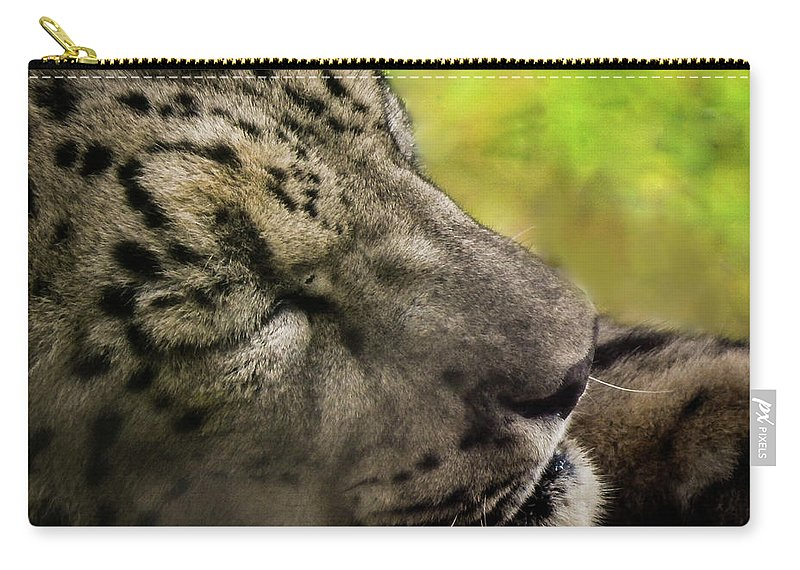 Leopard Carry-all Pouch featuring the photograph Sleepy Kitty by Kristie Ferrick