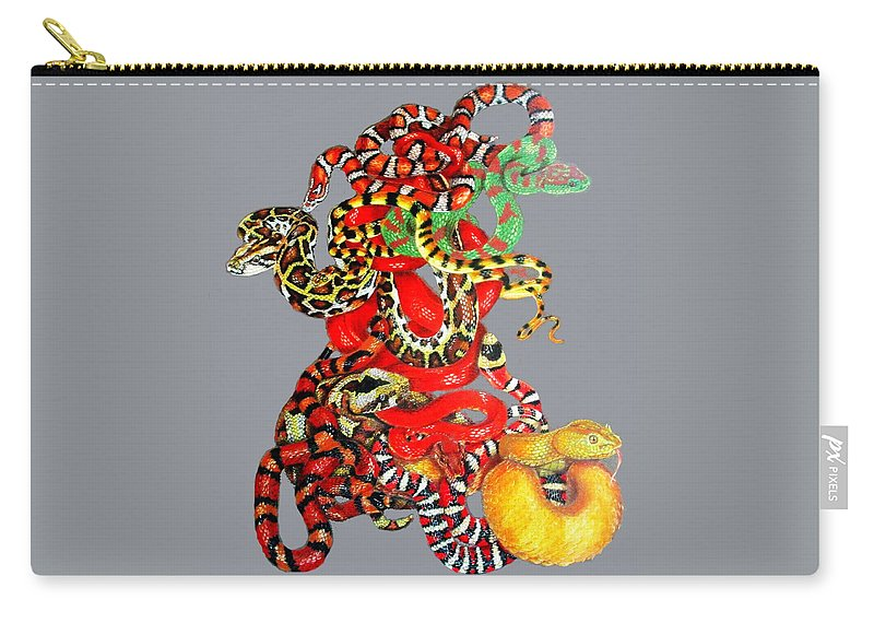 Reptile Carry-all Pouch featuring the drawing Slither by Barbara Keith