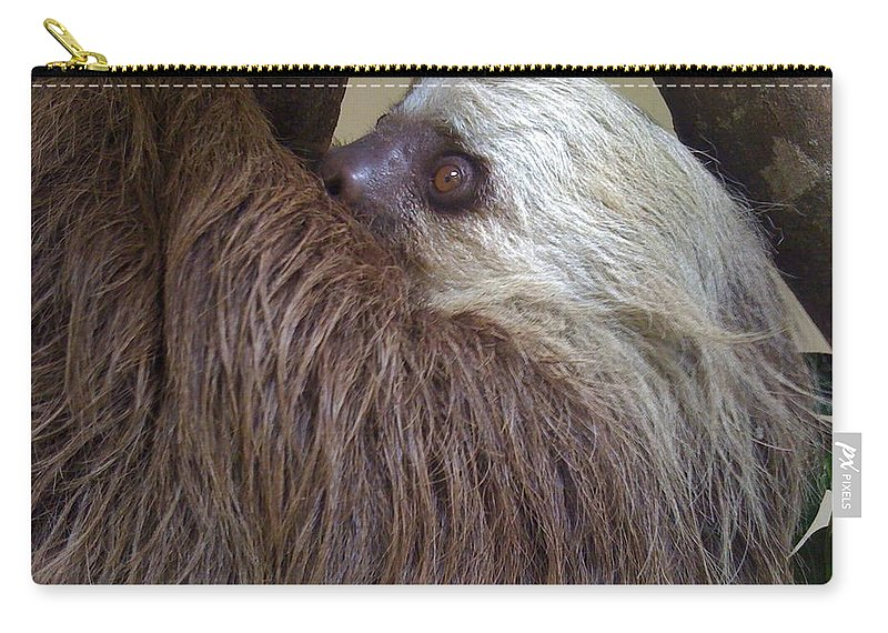 Sloth Carry-all Pouch featuring the photograph Sloth by Dolly Sanchez