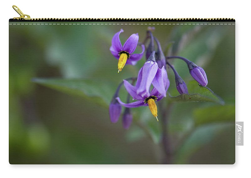 wild Flowers Carry-all Pouch featuring the photograph Small Wonder by Paul Mangold