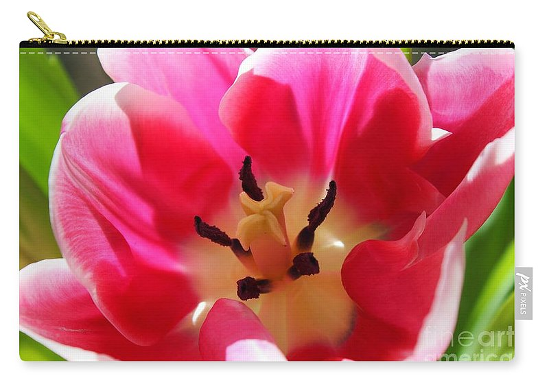 Tulip Carry-all Pouch featuring the photograph Smile by Clare Bevan