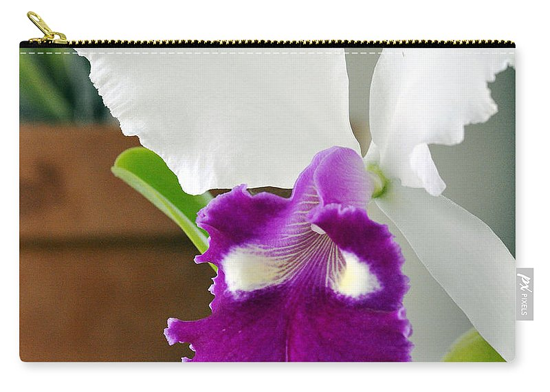 Clay Carry-all Pouch featuring the photograph Smile by Clayton Bruster
