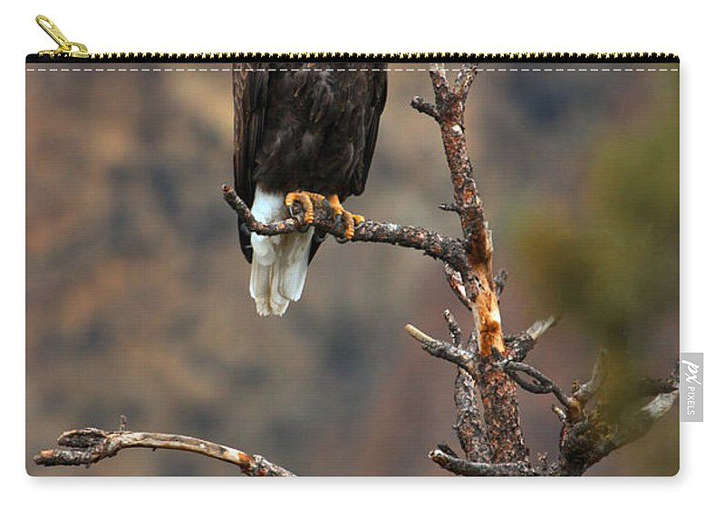 Eagle Carry-all Pouch featuring the photograph Smith Rock Bald Eagle by Adam Jewell