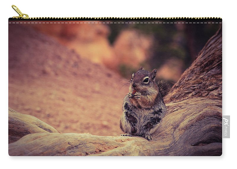 Squirrel Carry-all Pouch featuring the photograph Snack Time by Bonny Puckett