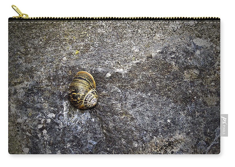 Irish Carry-all Pouch featuring the photograph Snail At Ballybeg Priory County Cork Ireland by Teresa Mucha