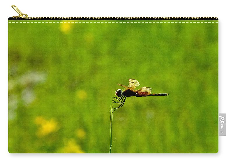 Snake Carry-all Pouch featuring the photograph Snake Doctor Resting by Douglas Barnett
