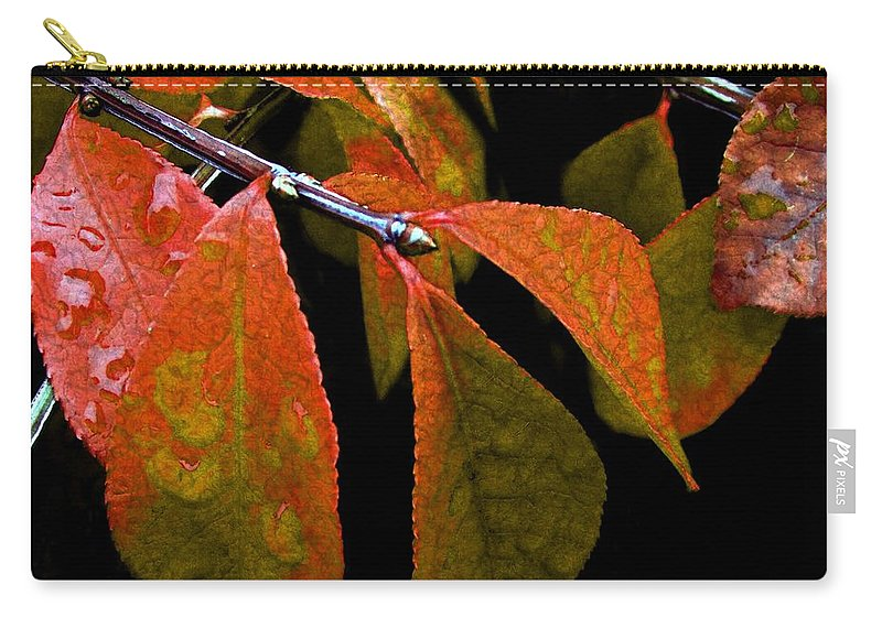 Autumn Carry-all Pouch featuring the digital art Snippet Of Fall by RC DeWinter