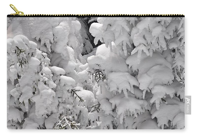 Snow Carry-all Pouch featuring the photograph Snow Coat by Alex Grichenko