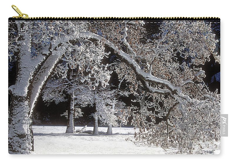 Black Oak Carry-all Pouch featuring the photograph Snow Covered Black Oak Yosemite National Park by Dave Welling