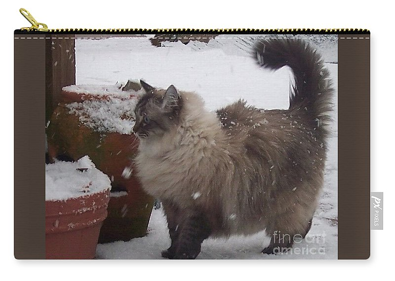 Cats Carry-all Pouch featuring the photograph Snow Kitty by Debbi Granruth