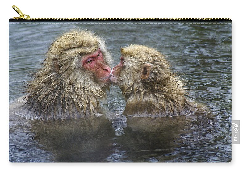 Snow Monkey Carry-all Pouch featuring the photograph Snow Monkey Kisses by Michele Burgess