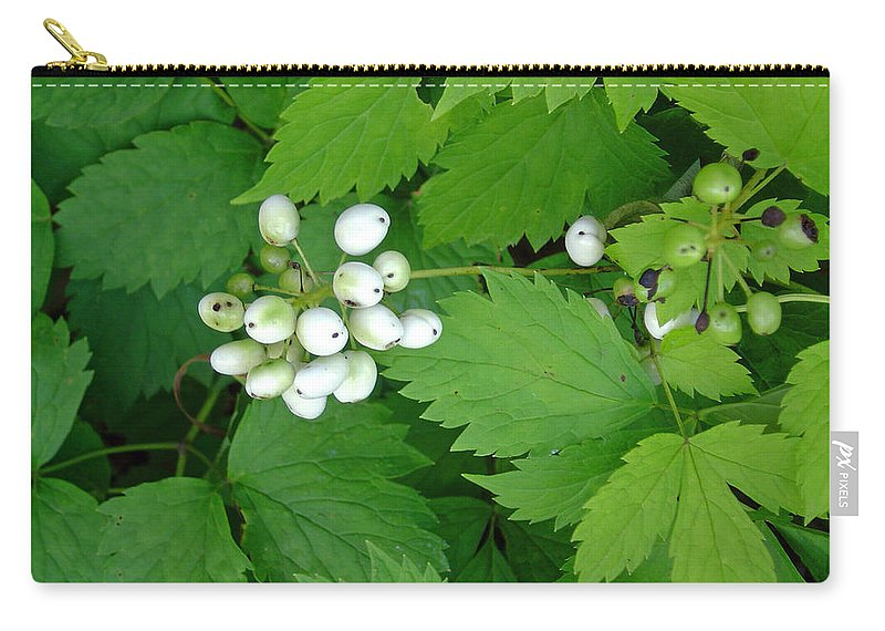 Snow White Bush Of Berries Carry-all Pouch featuring the photograph Snow White Berries by Joanne Smoley