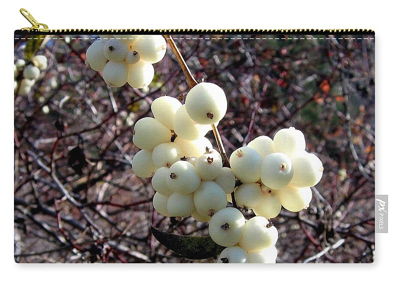 Autumn Carry-all Pouch featuring the photograph Snowberries by Will Borden