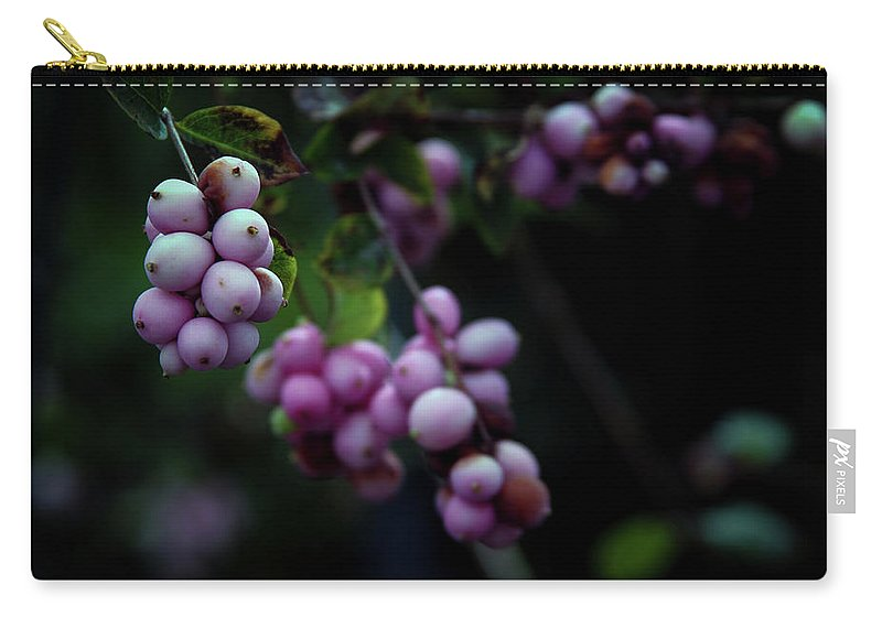 Snowberry Carry-all Pouch featuring the photograph Snowberry 5191 H_2 by Steven Ward