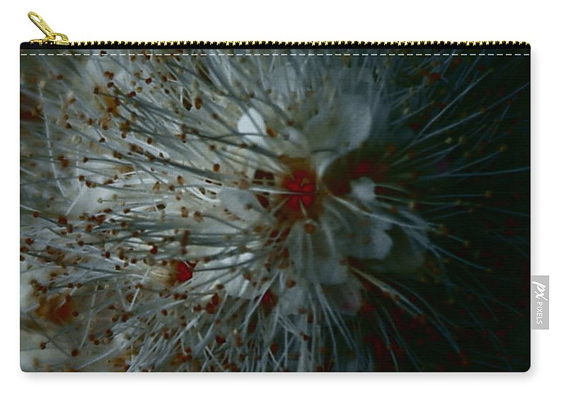 Macro Photography Of Floral Carry-all Pouch featuring the photograph Snowdrop by Joanne Smoley