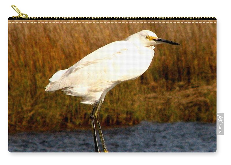 Bird Egret snowy Egret white Egret Seabird Animals Nature Wildlife Carry-all Pouch featuring the photograph Snowy Egret 1 by J M Farris Photography