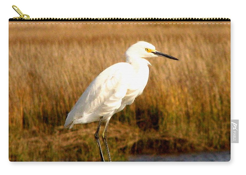 Bird Egret snowy Egret white Egret Seabird Animals Nature Wildlife Carry-all Pouch featuring the photograph Snowy Egret 2 by J M Farris Photography