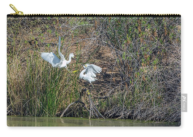 Snowy Carry-all Pouch featuring the photograph Snowy Egret Confrontation 8664-022018-1 by Tam Ryan