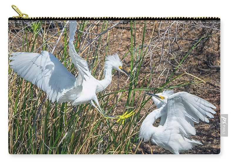 Snowy Carry-all Pouch featuring the photograph Snowy Egret Confrontation 8664-022018-1cr by Tam Ryan