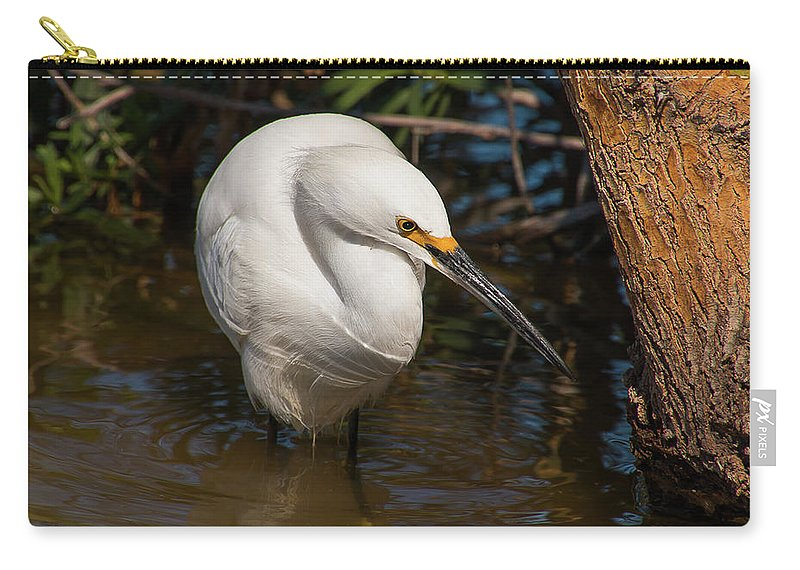 Snowy Egret Carry-all Pouch featuring the photograph Snowy Egret by Kelly Lemen