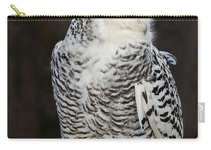 Snowy Owl Carry-all Pouch featuring the photograph Snowy Owl by Emma England