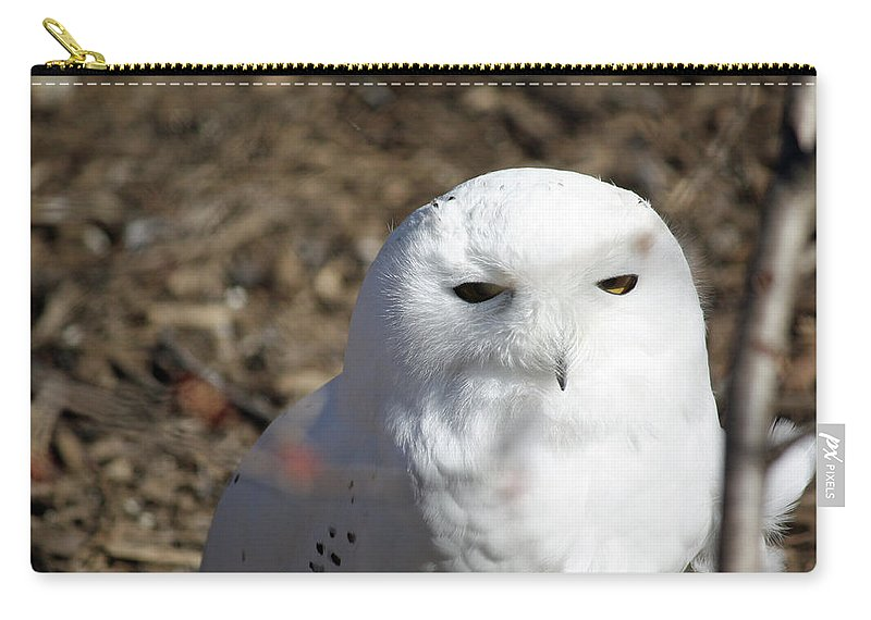 Maryland Carry-all Pouch featuring the photograph Snowy Owl by Ronald Reid