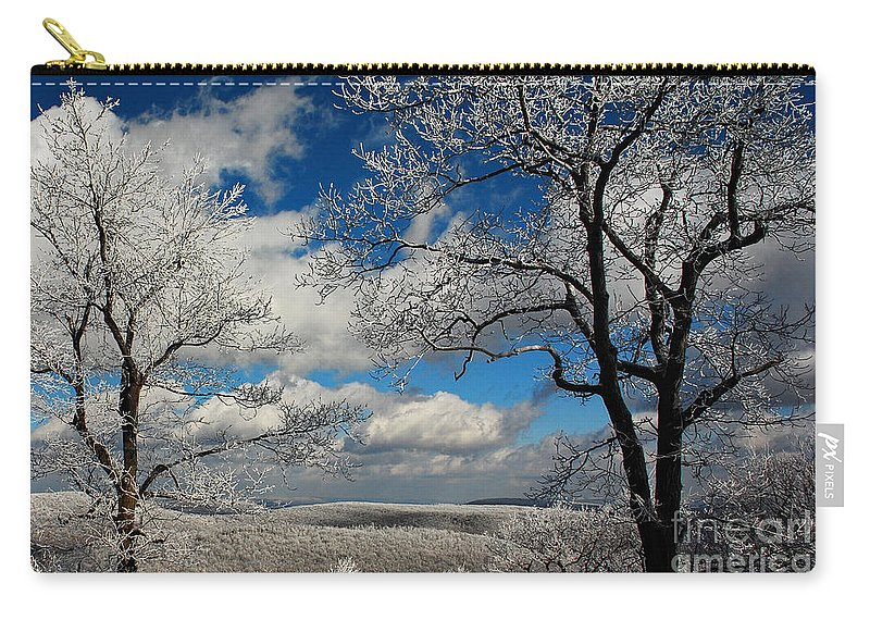 Snow Carry-all Pouch featuring the photograph Snowy Sunday by Lois Bryan