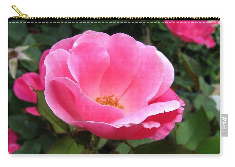 Flower Carry-all Pouch featuring the photograph So Pretty by Rhonda Barrett