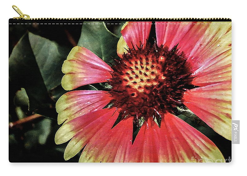 Flora Carry-all Pouch featuring the photograph Soaking Up The Sun by Todd A Blanchard