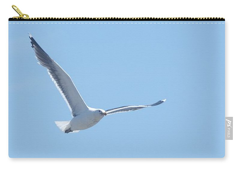 Seagull Carry-all Pouch featuring the photograph Soaring by Steven Natanson