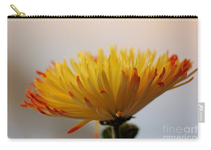 Flower Carry-all Pouch featuring the photograph Soft And Complexed by Mesa Teresita