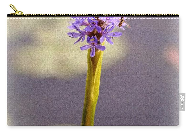 Macro Carry-all Pouch featuring the photograph Soft Beauty by Lisa Kilby