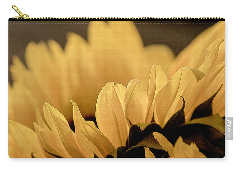 Nature Carry-all Pouch featuring the photograph Soft Summer Light 2 by Teresa Wilson