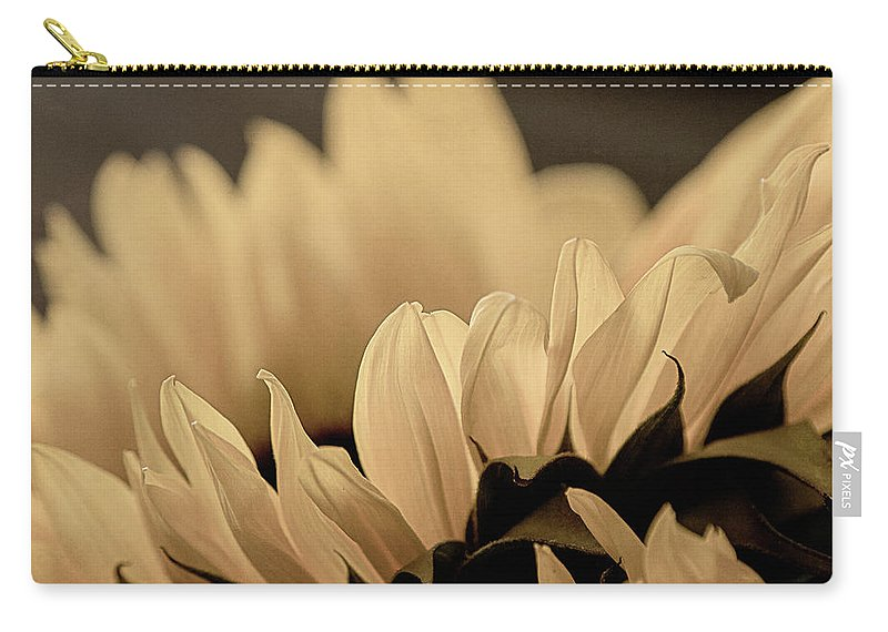 Nature Carry-all Pouch featuring the photograph Soft Summer Light 3 by Teresa Wilson