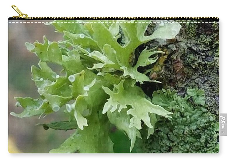 Something Green Carry-all Pouch featuring the photograph Something Green by Maria Urso