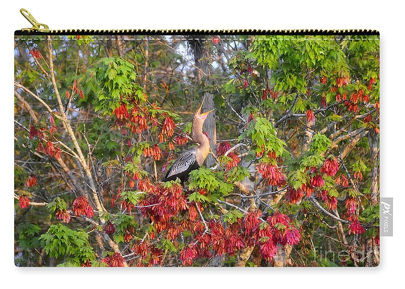 Anhinga Carry-all Pouch featuring the photograph Song Of The Anhinga by David Lee Thompson