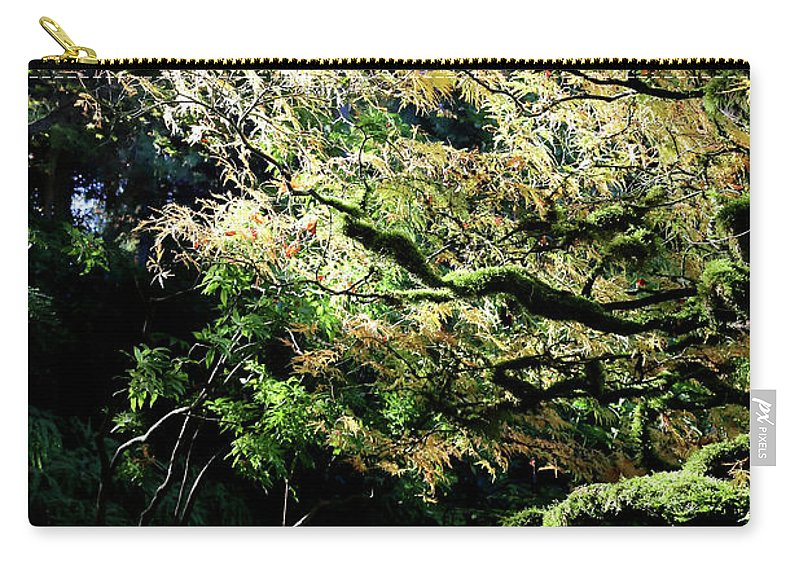 Outdoor Carry-all Pouch featuring the photograph Song Of The Light 2. by Andrew Kim