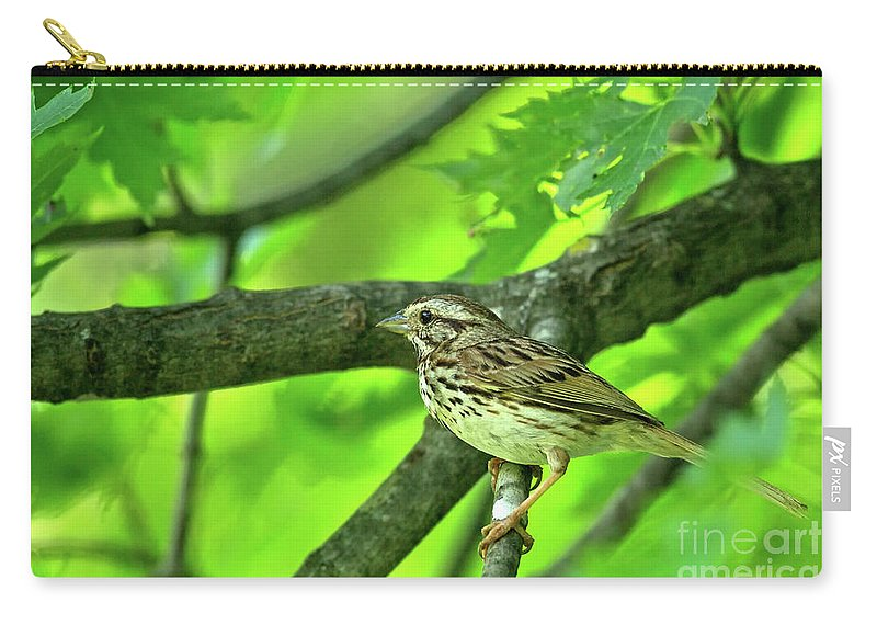 Songsparrow Carry-all Pouch featuring the photograph Songsparrow In Spring by Natural Focal Point Photography