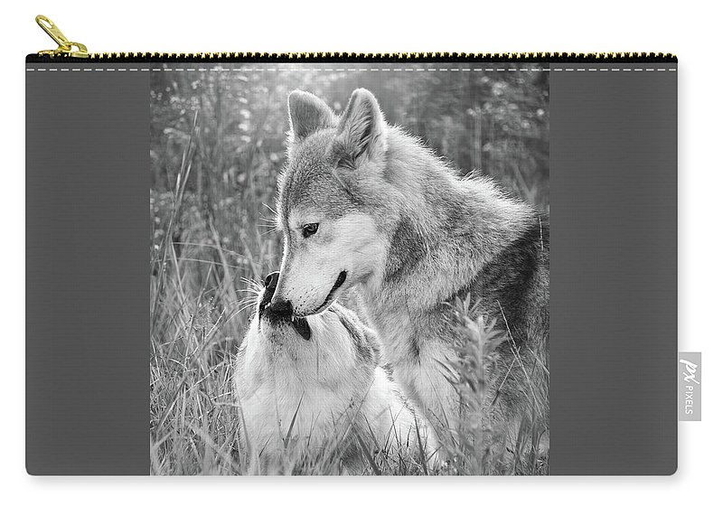 Black And White Carry-all Pouch featuring the photograph Soul Mates Black And White by Sharon McConnell