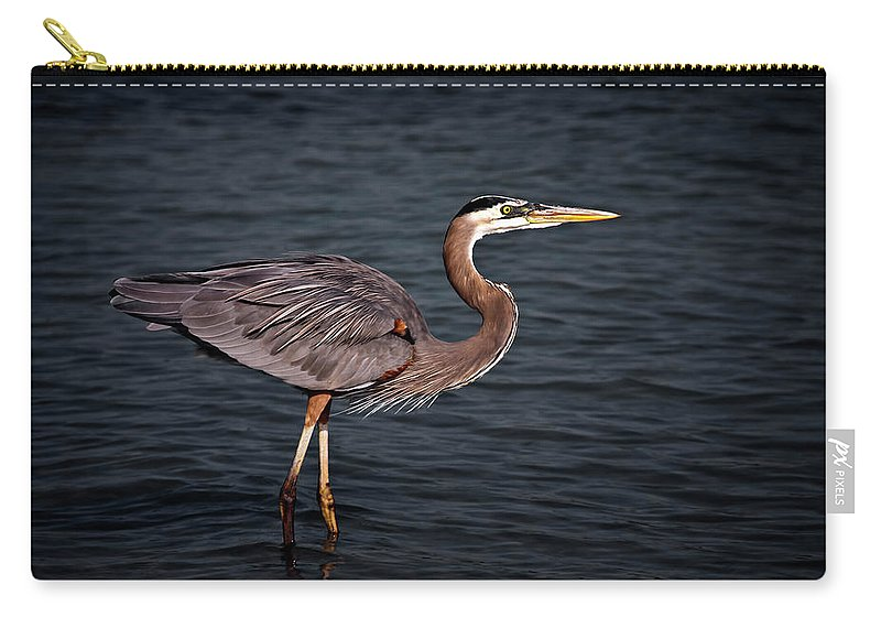 Crane Carry-all Pouch featuring the photograph Southern Comfort by Evelina Kremsdorf