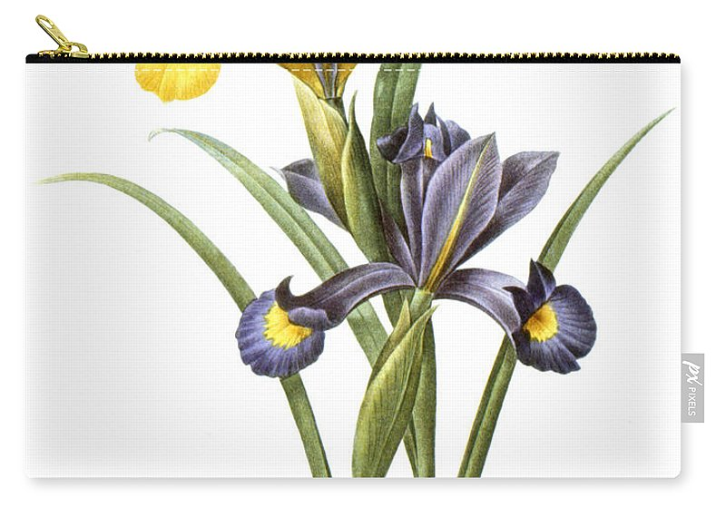 1833 Carry-all Pouch featuring the photograph Spanish Iris by Granger