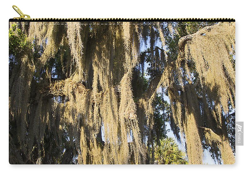 Spanish Moss Hanging Carry-all Pouch featuring the photograph Spanish Moss by Sally Weigand