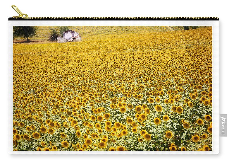 Sunflowers Carry-all Pouch featuring the photograph Spanish Sunflowers by Mal Bray