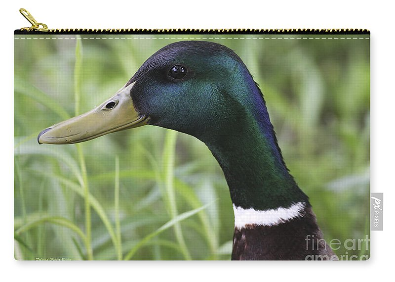 Bird Carry-all Pouch featuring the photograph Sparkle In My Eye by Deborah Benoit
