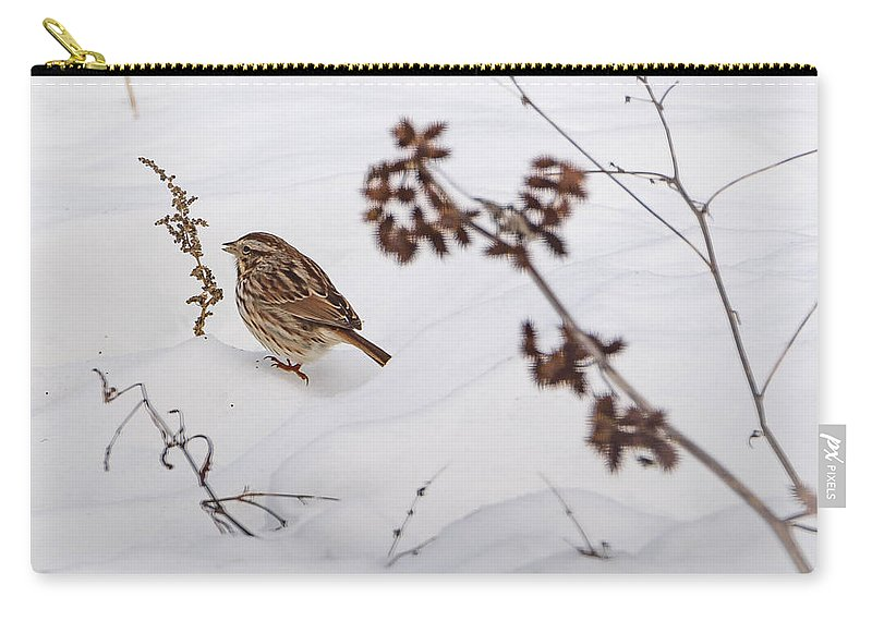 Song Sparrow Carry-all Pouch featuring the photograph Sparrow In The Winter Snow by Jan M Holden
