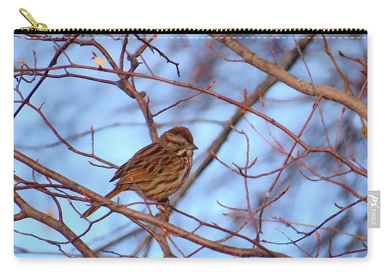 Sparrow Carry-all Pouch featuring the photograph Sparrow On Blue by MTBobbins Photography